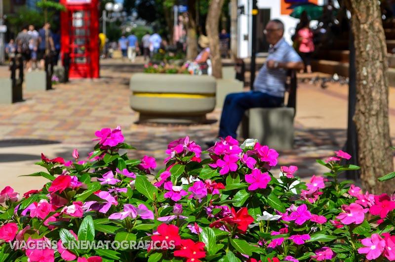 Rota do Café - Londrina