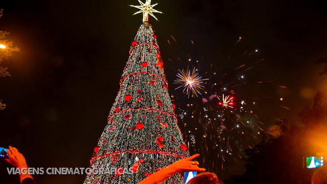 Natal em São Paulo: Árvore de Natal