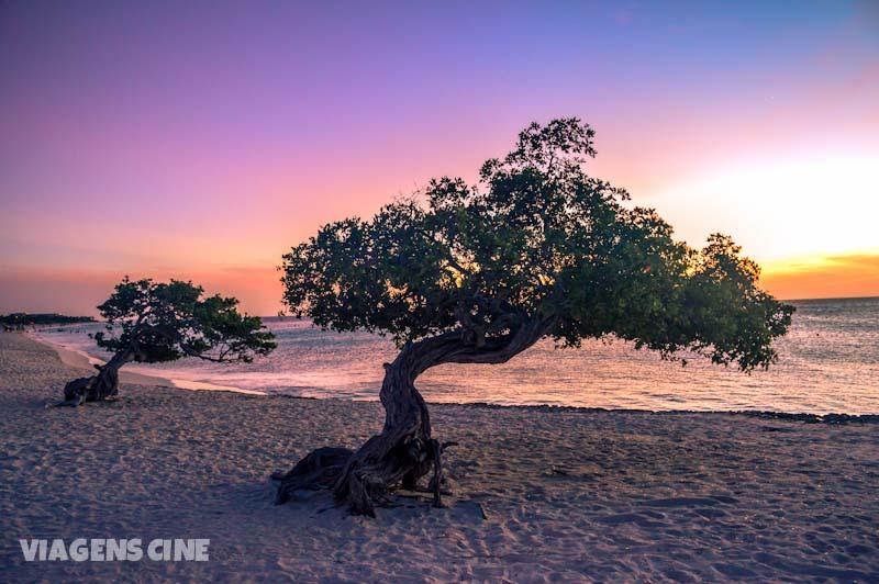 Melhores Praias de Aruba: Divi-Divi e Eagle Beach