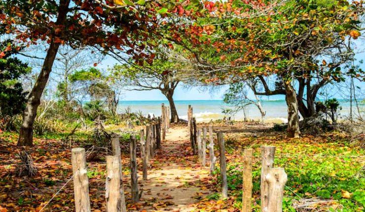 O que fazer em Aracruz ES - Praias do Litoral Norte