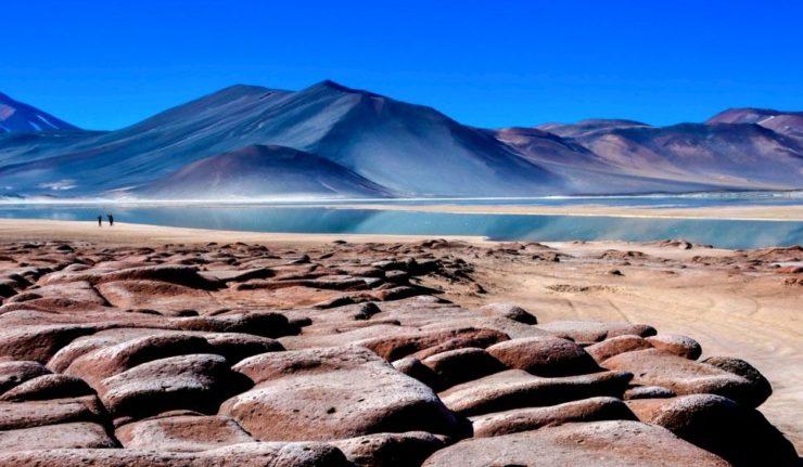 Piedras Rojas e Lagunas Altiplanicas: Melhor Passeio do Atacama