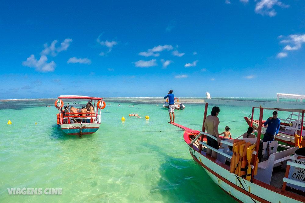 Roteiro Alagoas: Dicas e Roteiro de 7 a 10 Dias - Praias e Passeios Imperdíveis