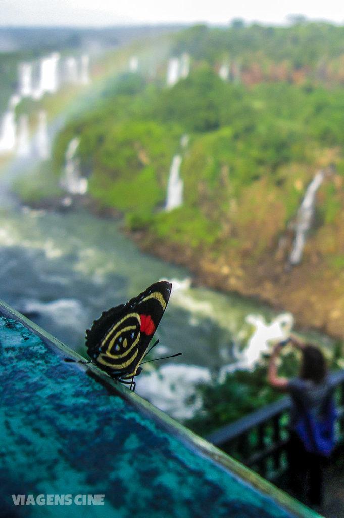 As 7 Maravilhas da Natureza do Brasil: Cataratas do Iguaçu