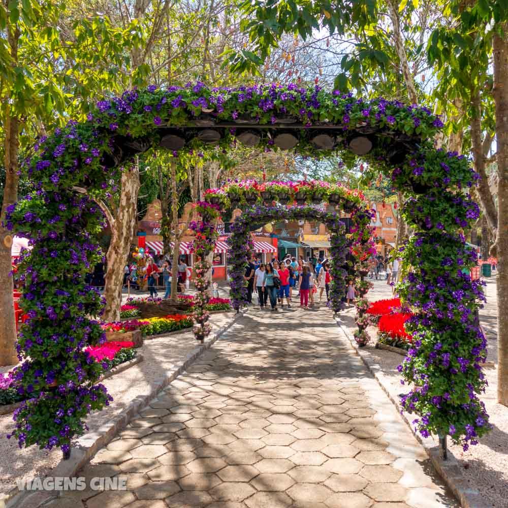 Holambra Cidade Das Flores Como Funciona A Expoflora 2018