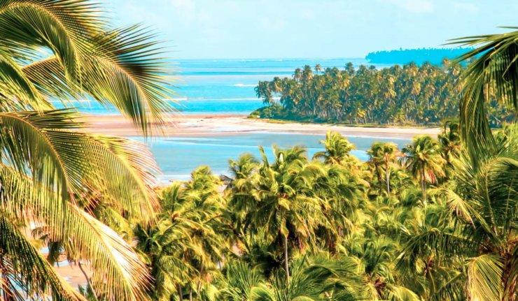 Porto de Galinhas e Maragogi: Lugares para Conhecer - Roteiro Alagoas e Pernambuco