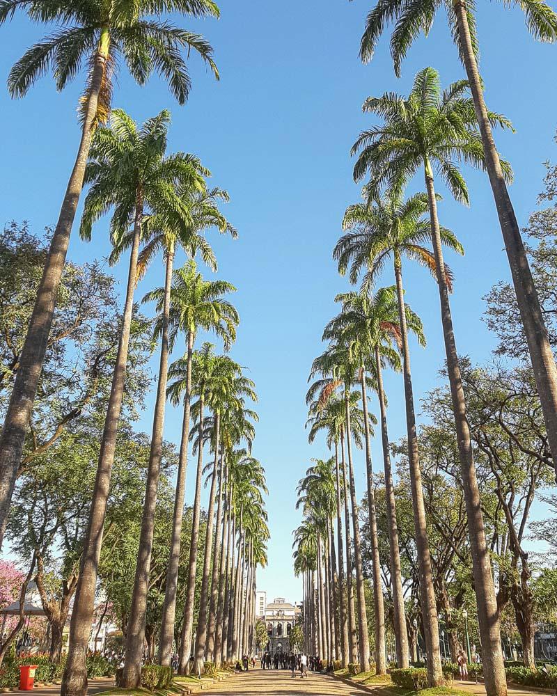 O que fazer em Belo Horizonte - 12 Pontos Turísticos para Visitar: Praça da Liberdade