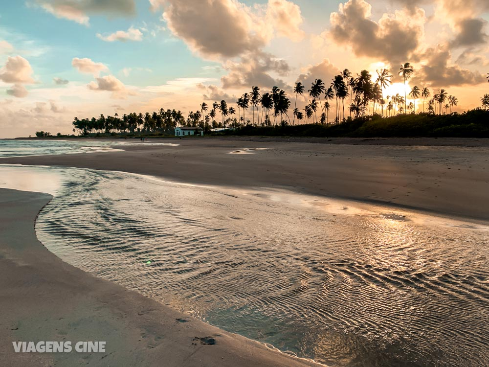 São Miguel dos Milagres: O que Fazer, Melhores Praias e Passeios na Rota Ecológica