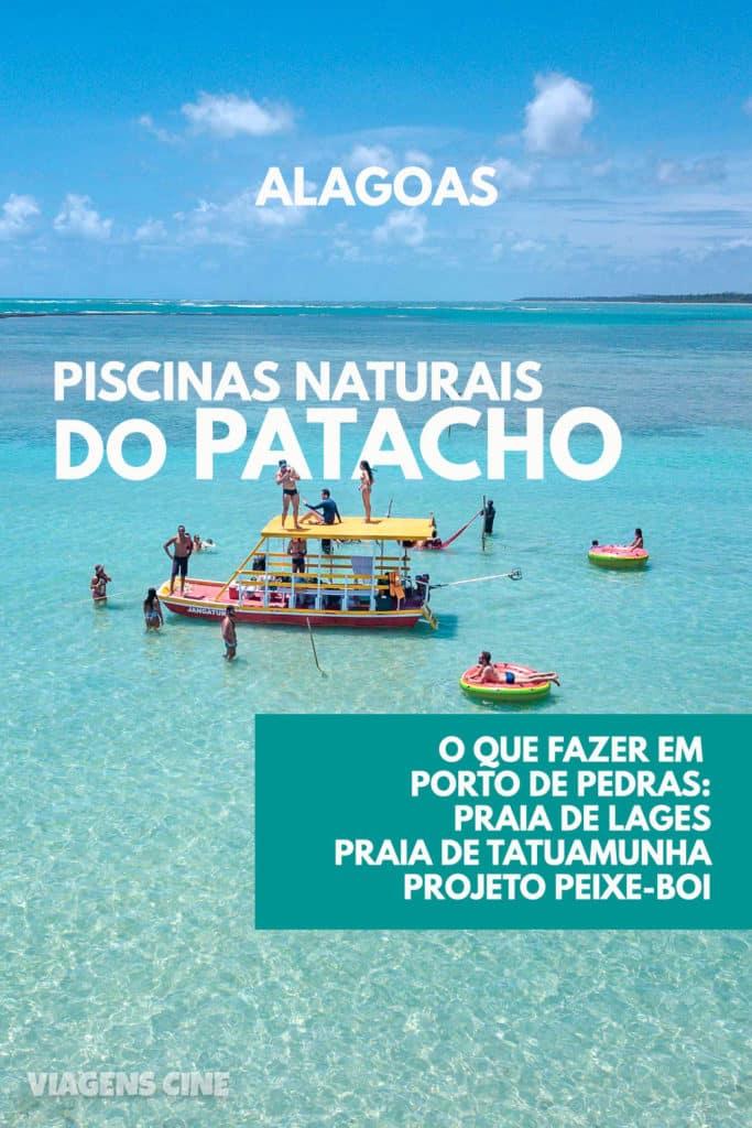 O que fazer em Porto de Pedras: Praia do Patacho, Piscinas Naturais e Projeto Peixe-Boi - Alagoas