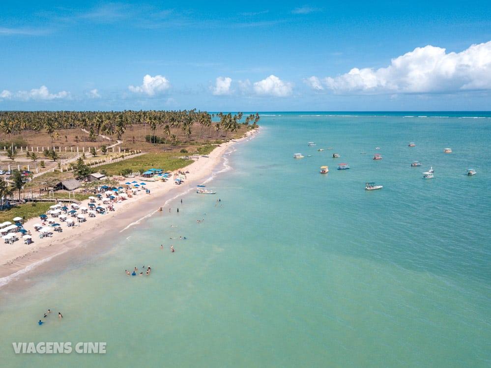 O que fazer em Porto de Pedras: Praia do Patacho, Tatuamunha e Projeto Peixe-Boi - Alagoas